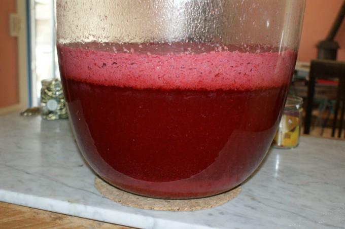 wein roten Johannisbeeren rezept wein selber machen rote Johannisbeere 04