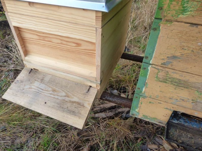 Bienenstand aus Rohren 02