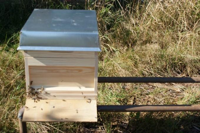 Bienenstand aus Rohren 05