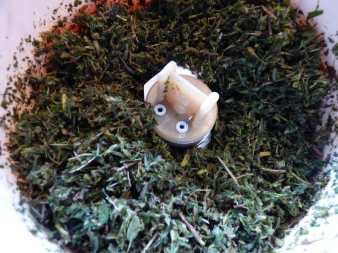 camenbert stangen rezept kaese grillen 01