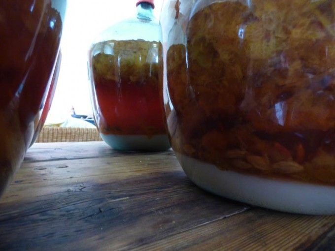 marunke marunkenwein selber machen rezept 06