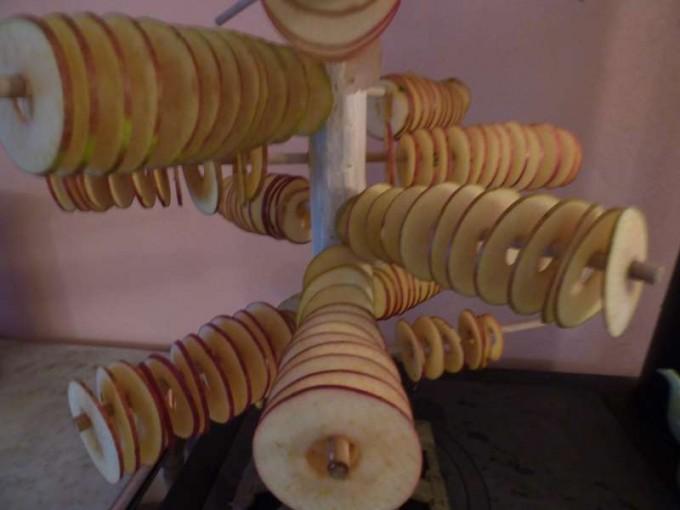 apfel trocknen apfelchips selber machen 06