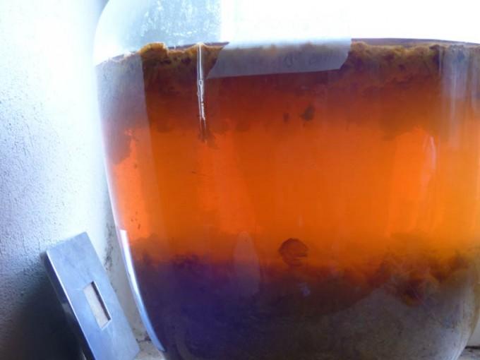 pflaumenwein marunkenwein abziehen 04