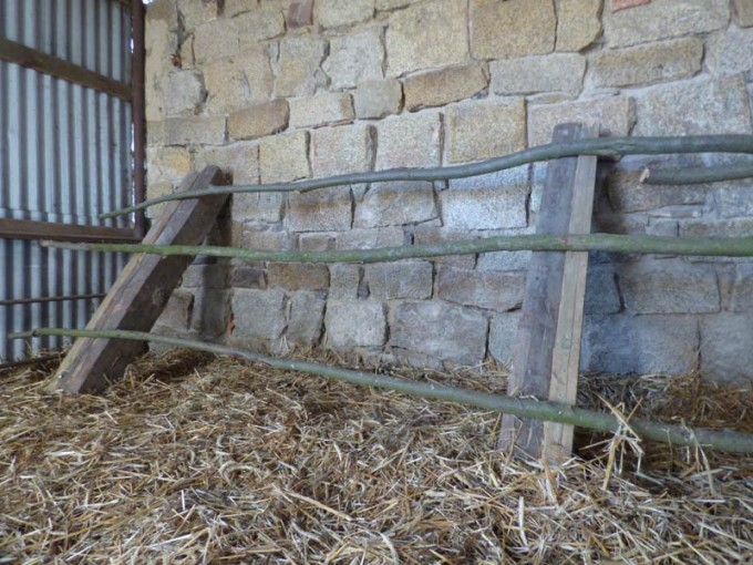 huehnerstall selber bauen ausstattung sitzstangen legenester  2