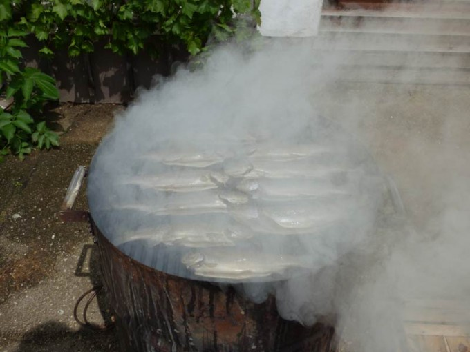 forelle raeuchern uds ugly drum smoker fisch 01