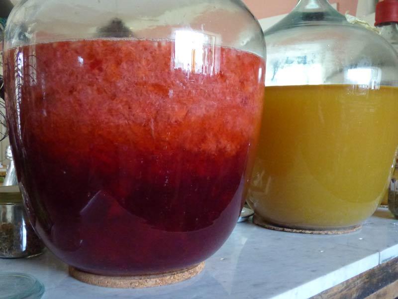 erdbeerwein pueriert vs gequetscht mixer zerdruecken 8