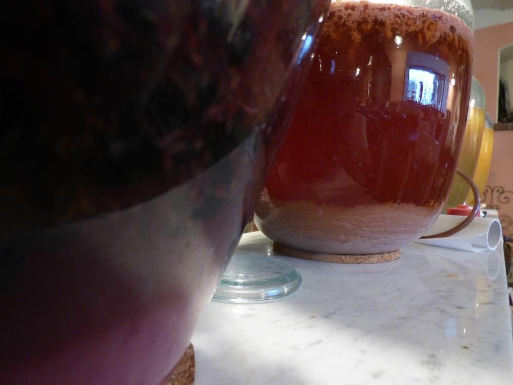 erdbeerwein pueriert vs gequetscht mixer zerdruecken 9