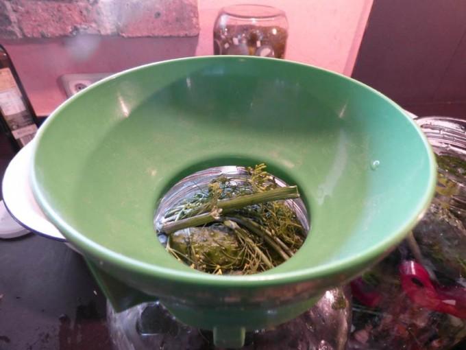 saure gurken selber machen rezept bilder  2