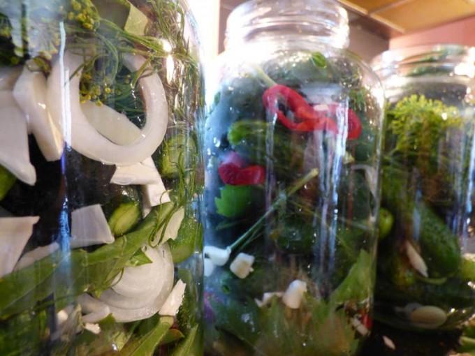 saure gurken selber machen rezept bilder  3