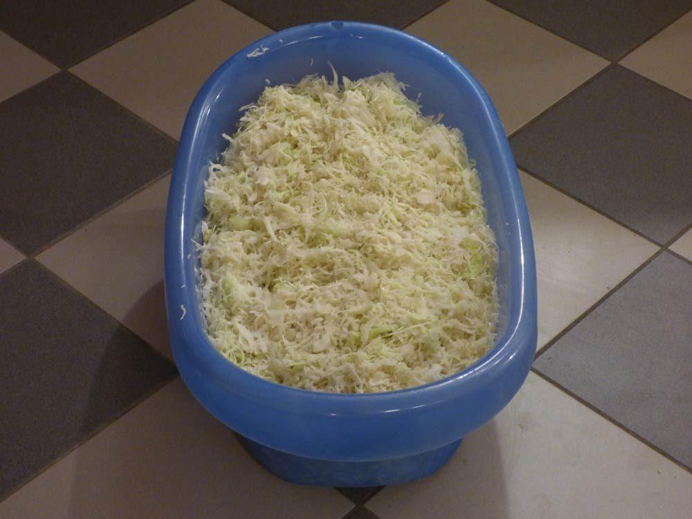 sauerkraut-selber-machen-beschwerungssteine-wacholder-piment-1