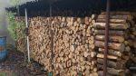 Holz – wie jedes Jahr