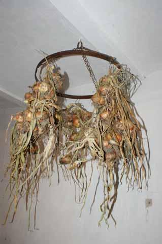 Hier kann man Kräuter oder Zwiebeln aufhängen und trocknen